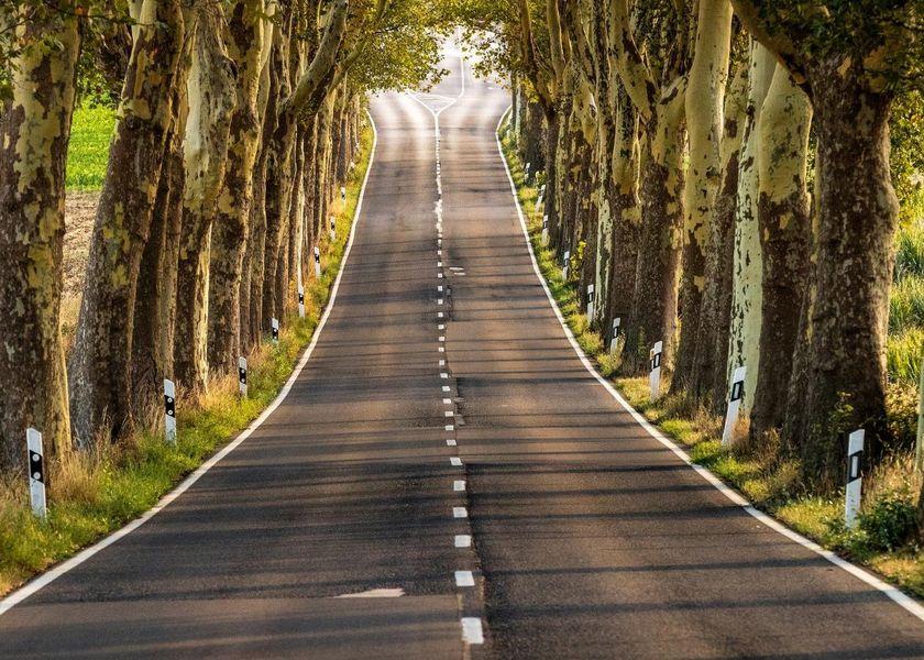 Roadtrips durch Deutschland