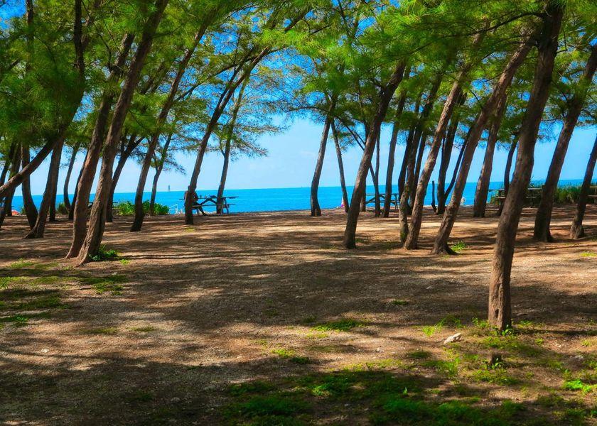 beach-2372557_1920.jpg