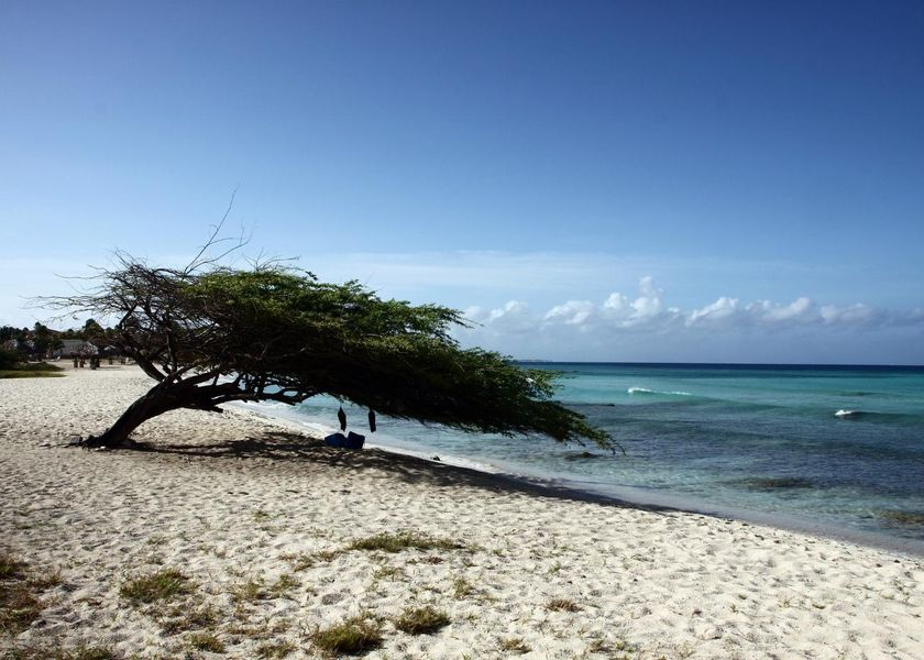 beach-26016_1920.jpg