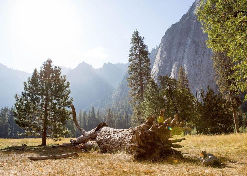 yosemite-national-park-4904550_1280.jpg